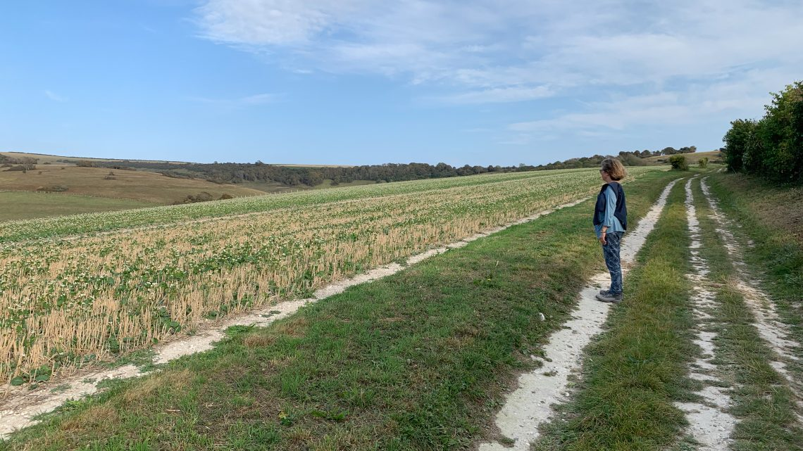 20 Walks in Sussex:     Number 10: The Long Man